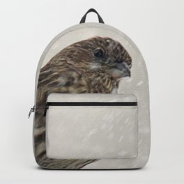 Facing the Storm (House Finch) Backpack