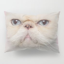 Lord Aries Cat - Photography 017 Pillow Sham