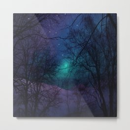 Into the Dark Forest Metal Print