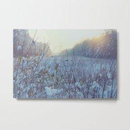 Winter light Metal Print