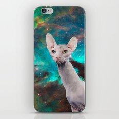 Long Neck  Cat iPhone & iPod Skin