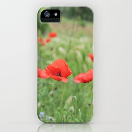Poppies in Tuscany, Italy  iPhone Case