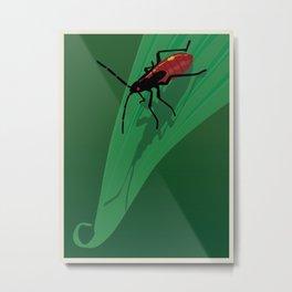 Young Bug Metal Print