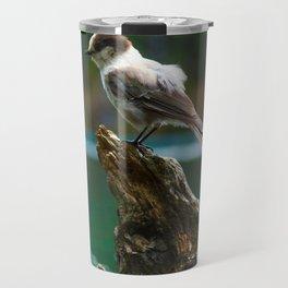 Grey Jay at Joffre Lakes Travel Mug