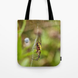 Yellow and Black Argiope Tote Bag
