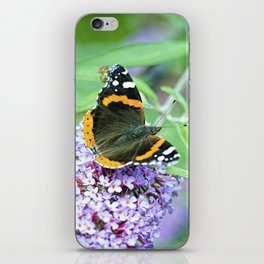 Butterfly VII iPhone Skin