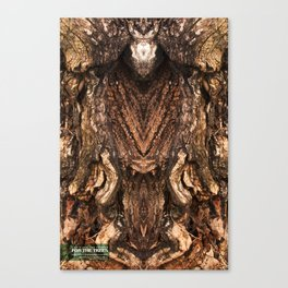 FTT Collection #093 Canvas Print