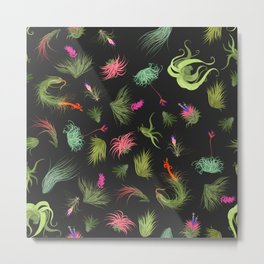 Air Plants Charcoal Background Metal Print
