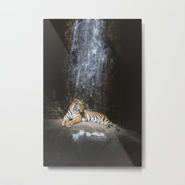 Big cat Metal Print