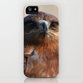 Tawny Eagle iPhone Case