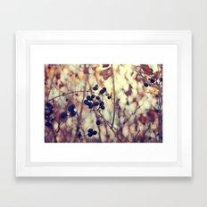 Autumn Sun in Ohio Framed Art Print