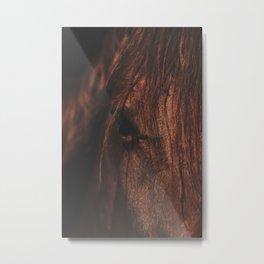 Horse - Sioux Metal Print