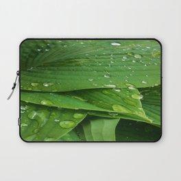 Fresh Laptop Sleeve