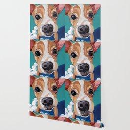 Golf Ball Puppy Wallpaper