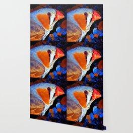 Zebra Finch Painted Wallpaper