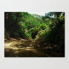 Outdoors @ Rincon Puerto Rico Canvas Print