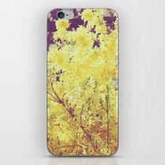 yellow flower - Forsythia iPhone & iPod Skin
