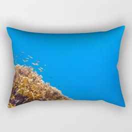 School Rectangular Pillow