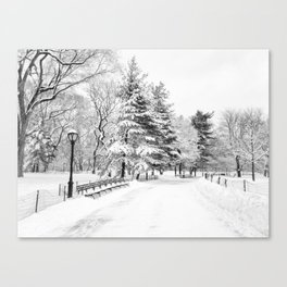 New York City Winter Trees in Snow Canvas Print