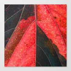 Red, Green  Canvas Print