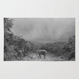 safari1 Rug