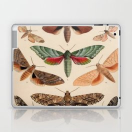 Vintage Natural History Moths Laptop & iPad Skin