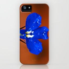 Single Lobelia Petal  iPhone Case