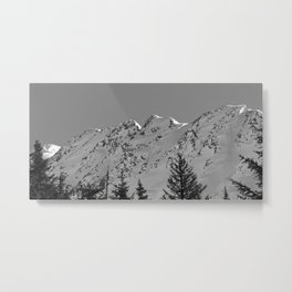 Gwin's Winter Vista - B & W Metal Print
