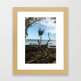 Island Livin' Framed Art Print