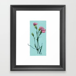 Carnation drawing over mint Framed Art Print