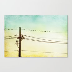 Yellow Mint Bird on Wire Photography, Turquoise Teal Birds on a Telephone Wire Canvas Print