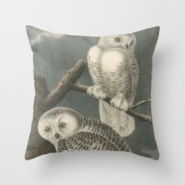Vintage Illustration of Snowy Owls (1840) Throw Pillow