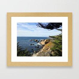 Big Sur Cypress Framed Art Print
