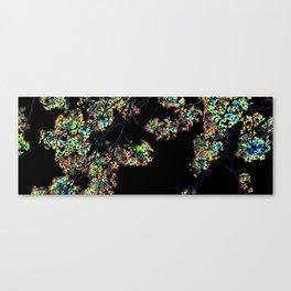 Mismatch Color Hatch Canvas Print