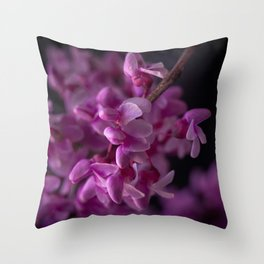 Red Bud Blossoms  Throw Pillow