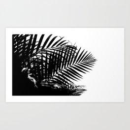 Tropical Darkroom #269 Art Print
