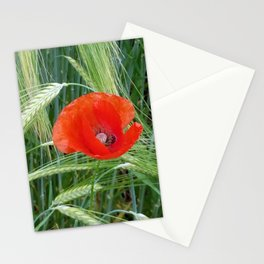 The Red Poppy in the Field Stationery Cards