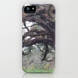 500 Years iPhone Case