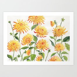Dahlia Flowers 2 Art Print
