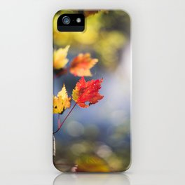 Autumn Soliloquy iPhone Case