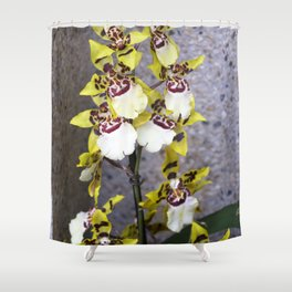 Longwood Gardens Orchid Extravaganza 48 Shower Curtain