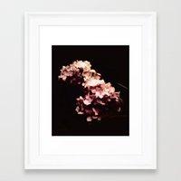 hydrangea Framed Art Prints featuring Hydrangea by Christine Belanger