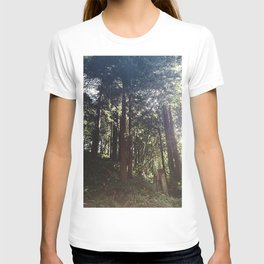Redwoods Secret Staircase T-shirt