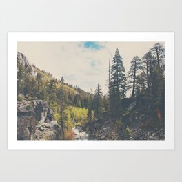 into the wild ...  Art Print