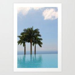 Hawaiian Oasis Art Print