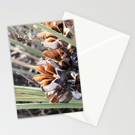 yucca I (flowers exploding in winter) Stationery Cards