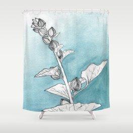 Hollyhock Buds Shower Curtain