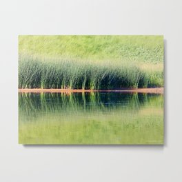 Beach Grass Reflected Metal Print