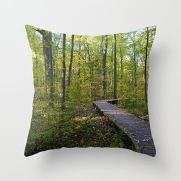 Maidstone conservation area in southern Ontario Throw Pillow