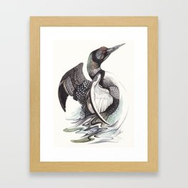 The Loon Framed Art Print